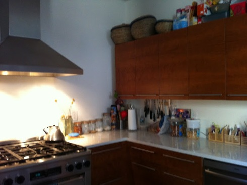 sprucekitchen before